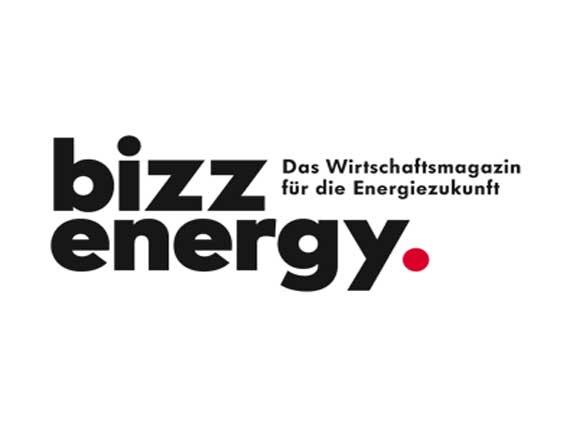 bizz-energy.com